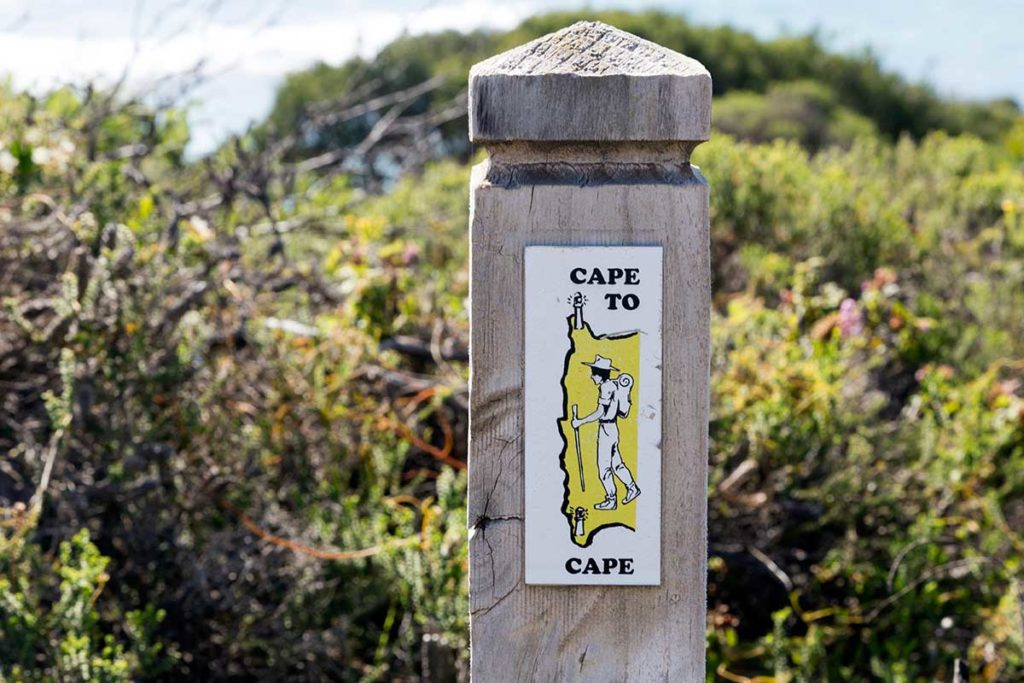 Yellow Markers on the Cape to Cape Trail